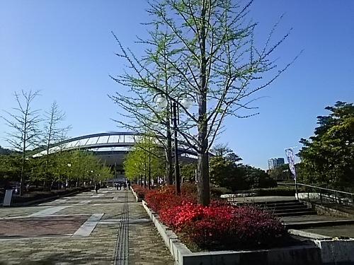 DSC_2663.JPG